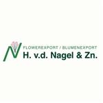 H-van-der-Nagel-en-Zn