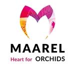Maarel-Orchids