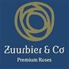 Zuurbier-en-Co-Int