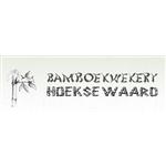 Bamboekwekerij-Hoekse-Waard