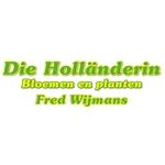 F-Wijmans-eK,-Die-Holländerin