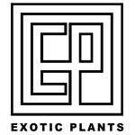 Exoticplants-Arnex