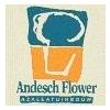 Andesch-Flower