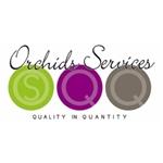 Orchids-Services