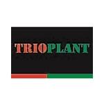 Trioplant