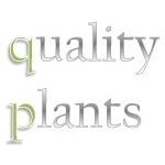 Qualityplants