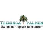 Teeninga-palmen