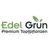 Edel-Grün-BV
