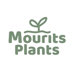 Mourits-Plants