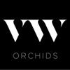 VW-Orchids