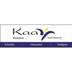 Kaay-kwekerij