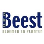Van-Beest-bloemen-en-planten