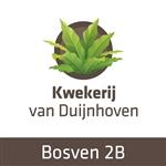 H-van-Duijnhoven