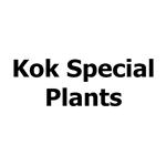 Kok-Special-Plants