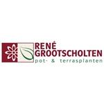 Rene-Grootscholten-kuipplanten