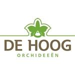 De-Hoog-Orchideeën