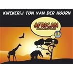 Kwekerij-Ton-van-der-Hoorn