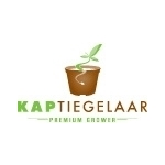 Kap-Tiegelaar