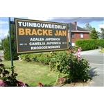Tuinbouw-bedrijf-Jan-Bracke