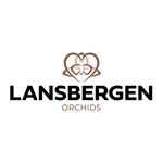 Lansbergen-Orchideeën