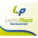 Leenaerts-boomkwekerijen-BV