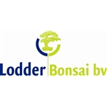 Lodder-Bonsai