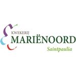 Marienoord
