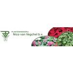 Plantenkwekerij-van-Vegchel