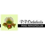 PP-Orchideeën