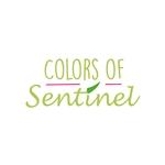 Sentinel-BV