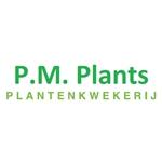 PM-Plants