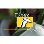 Future-Flowers