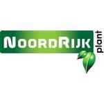 NoordRijk-Plant