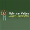 Gebr-van-Velden