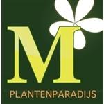Moerkerk-Plantenparadijs