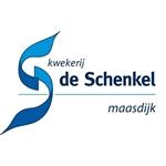 Kwekerij-de-Schenkel