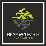 René-van-Schie-Potplanten