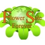 FlowerSale-Forever