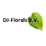 DJ-Florals-BV