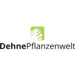 Dehne-Pflanzenwelt-GmbH