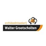 Walter-Grootscholten