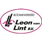 Leon-van-Lint