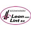 Boomkwekerij-Leon-van-Lint-BV