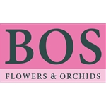 Bos-Orchids
