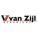 Lex-van-Zijl