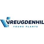 Plantenkwekerij-Vreugdenhil-BV