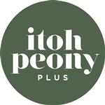 Itoh-Peony-Plus-BV