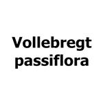 Vollebregt-passiflora