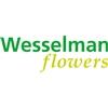 Wesselman-Flowers
