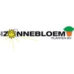 Zonnebloem-kruiken